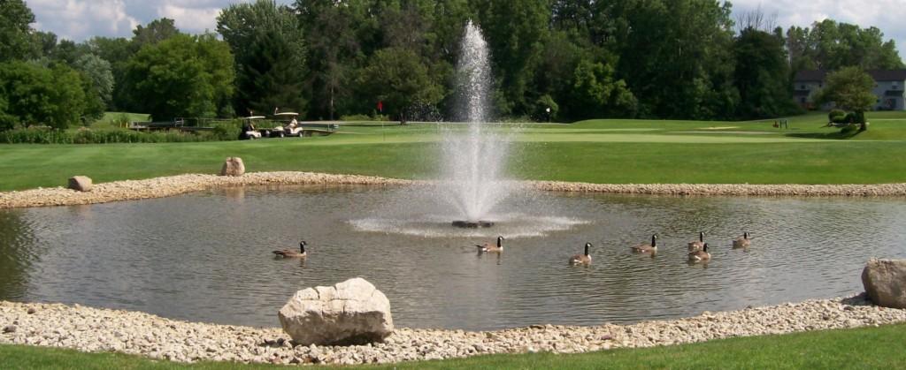 Fountain (2236 x 916)